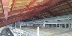 武道館の天井塗装